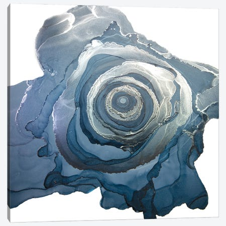 Sink Or Swim Canvas Print #JPZ25} by Jamie Pomeranz Canvas Artwork