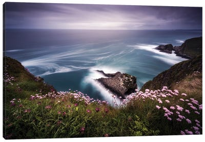 On The Edge Of The Cliff Canvas Art Print