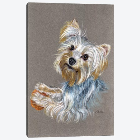 Yorkie Canvas Print #JRE101} by Jennifer Redstreake Canvas Artwork