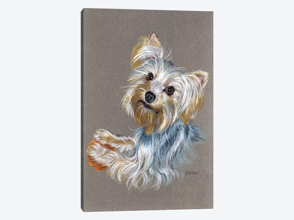 Yorkie by Jennifer Redstreake 1-piece Canvas Print