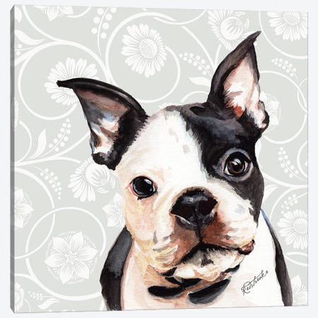 Boston Terrier Canvas Print #JRE105} by Jennifer Redstreake Canvas Art Print