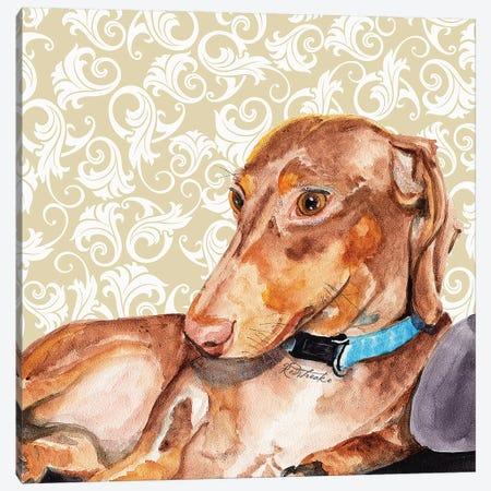 Dachshund Canvas Print #JRE109} by Jennifer Redstreake Canvas Art