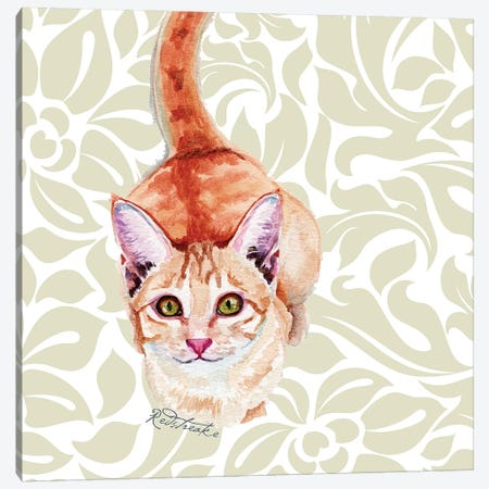 Donnie Canvas Print #JRE112} by Jennifer Redstreake Canvas Art Print