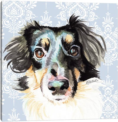 Sheltie Corgi Mix Canvas Art Print