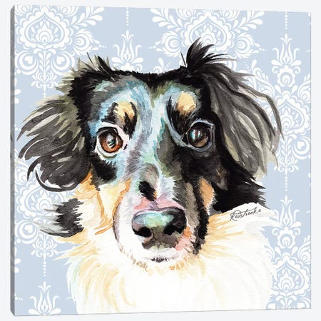 Sheltie Corgi Mix Canvas Print #JRE130} by Jennifer Redstreake Canvas Print