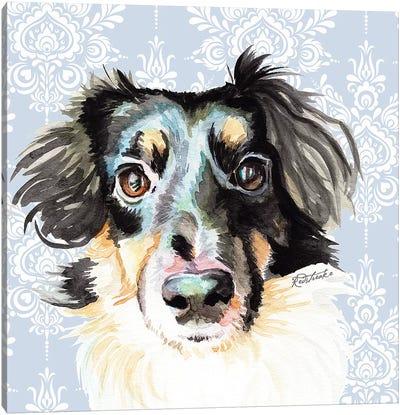 Sheltie Corgi Mix Canvas Art Print