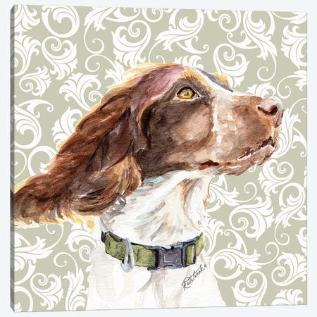 Springer Spaniel Canvas Print #JRE133} by Jennifer Redstreake Art Print