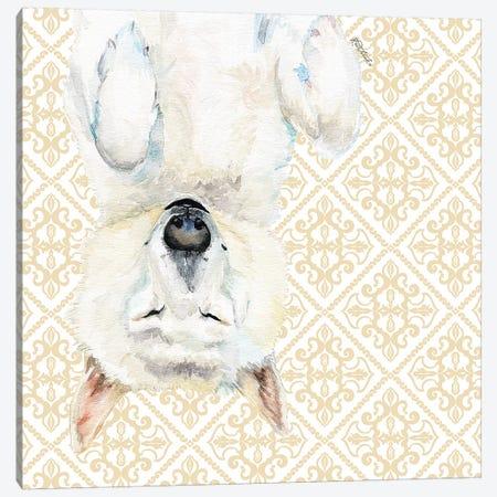 White Husky Canvas Print #JRE134} by Jennifer Redstreake Canvas Art
