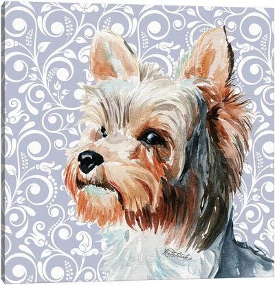 Yorkshire Terrier II Canvas Art Print