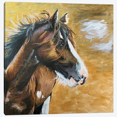 Wild Pony I Canvas Print #JRE138} by Jennifer Redstreake Art Print