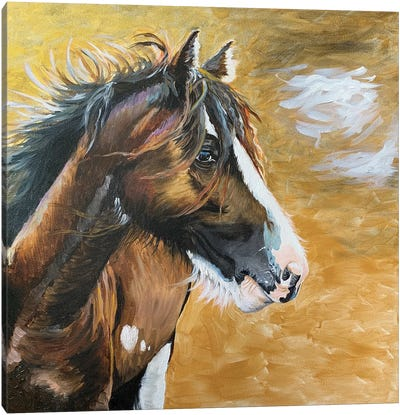 Wild Pony I Canvas Art Print
