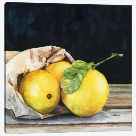 Bag Of Lemons Canvas Print #JRE146} by Jennifer Redstreake Canvas Print