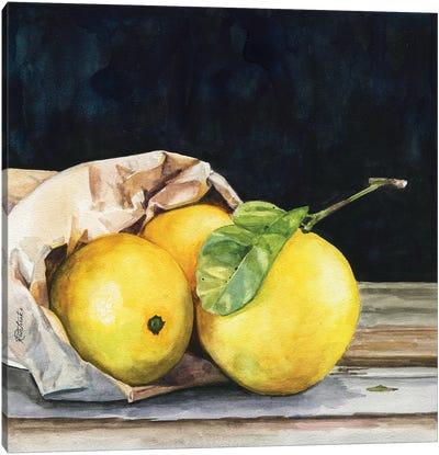 Bag Of Lemons Canvas Art Print