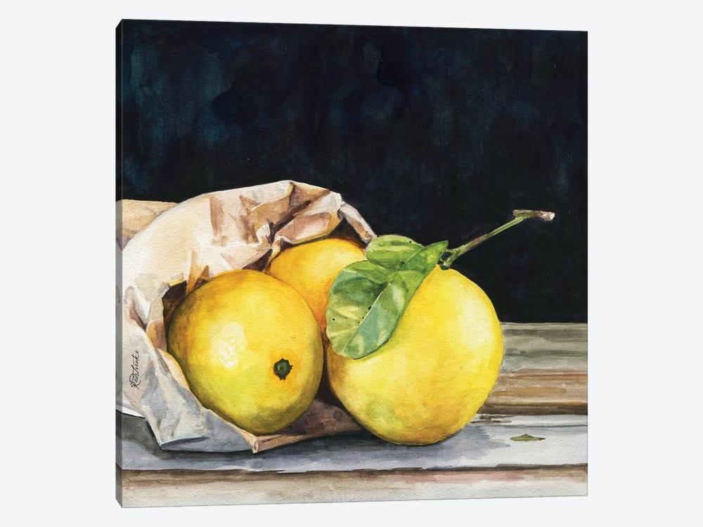 Bag Of Lemons by Jennifer Redstreake 1-piece Canvas Wall Art