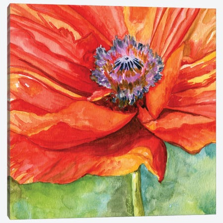Red Poppy Canvas Print #JRE149} by Jennifer Redstreake Canvas Wall Art
