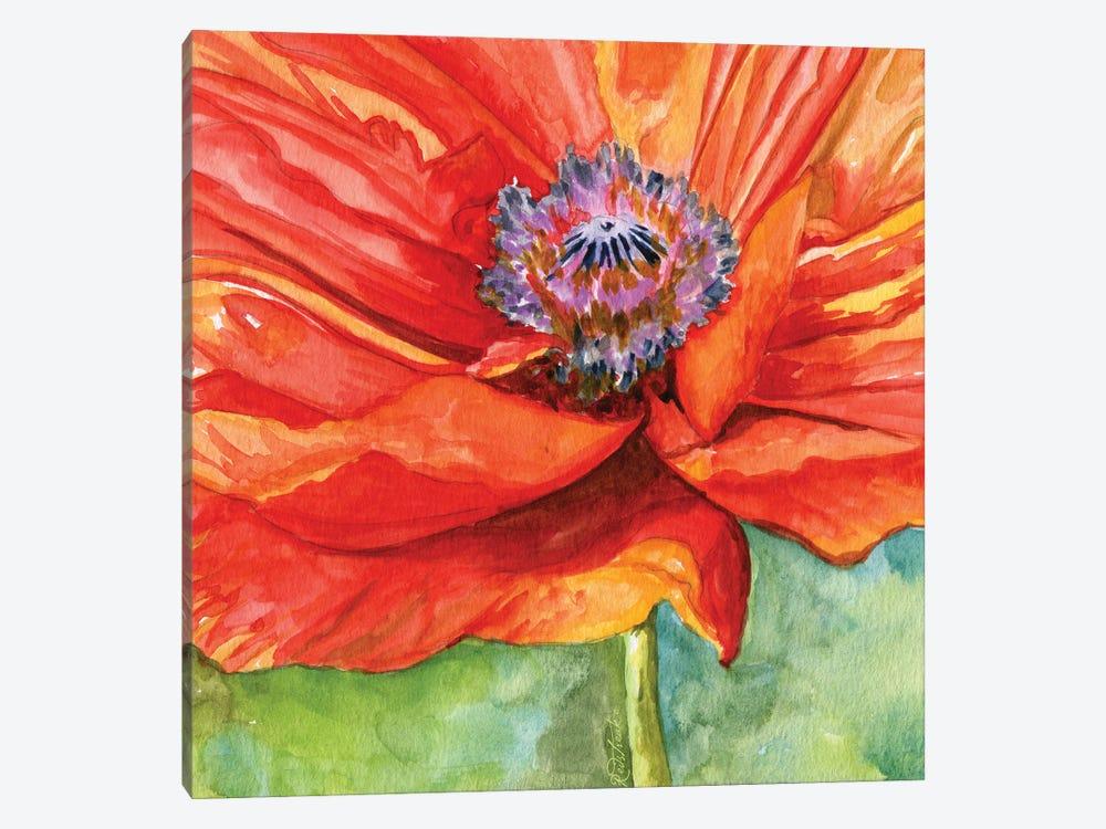Red Poppy by Jennifer Redstreake 1-piece Art Print