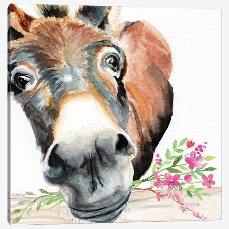 Donkey With Flowers Canvas Print #JRE163} by Jennifer Redstreake Canvas Wall Art