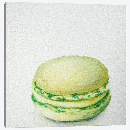 Lime Macaron Canvas Print #JRE18} by Jennifer Redstreake Canvas Artwork
