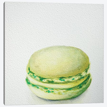 Lime Macaron Canvas Print #JRE18} by Jennifer Redstreake Canvas Artwork