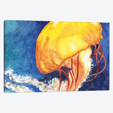 Chattanooga Jellyfish II Canvas Print #JRE33} by Jennifer Redstreake Canvas Artwork