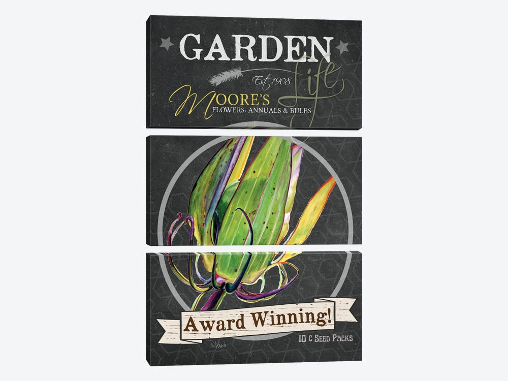 Chalkboard Series: Award Winning by Jennifer Redstreake 3-piece Canvas Wall Art