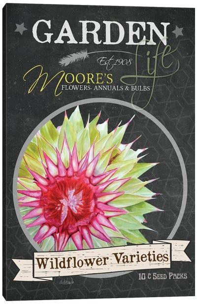 Chalkboard Series: Wildflower Varieties Canvas Print #JRE46