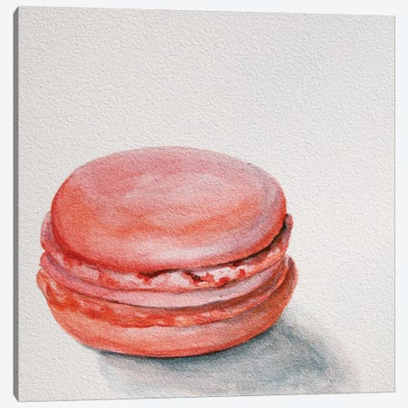 Raspberry Macaron Canvas Print #JRE4} by Jennifer Redstreake Canvas Print