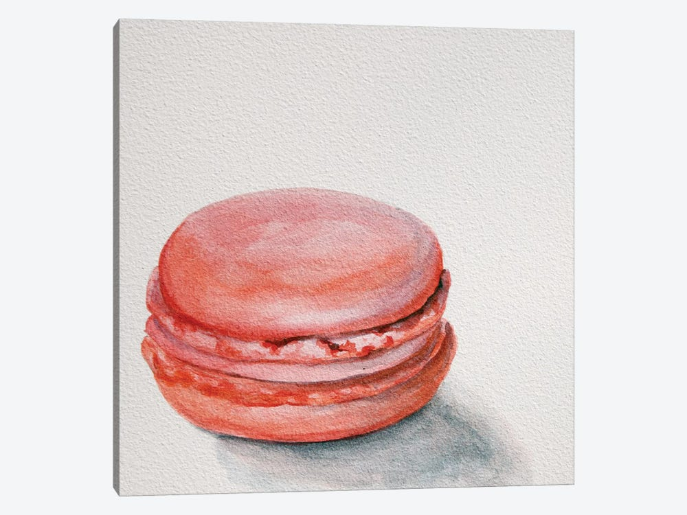 Raspberry Macaron by Jennifer Redstreake 1-piece Canvas Print