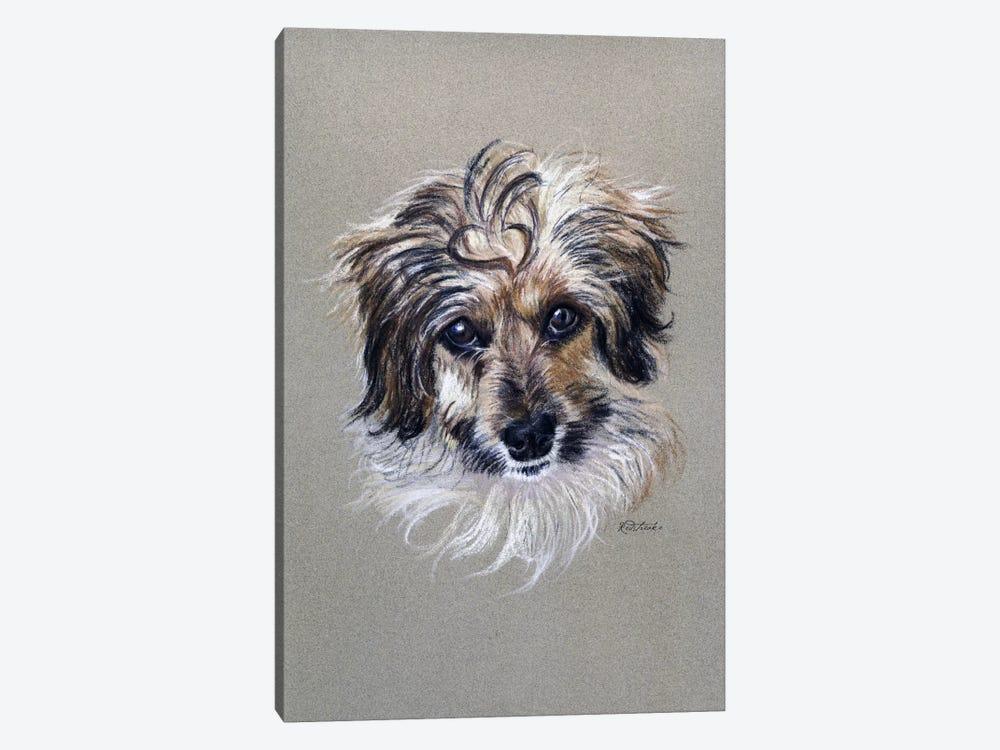 Adorable Fuzzy Face by Jennifer Redstreake 1-piece Canvas Wall Art