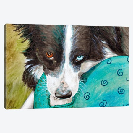 Border Collie Canvas Print #JRE64} by Jennifer Redstreake Canvas Wall Art