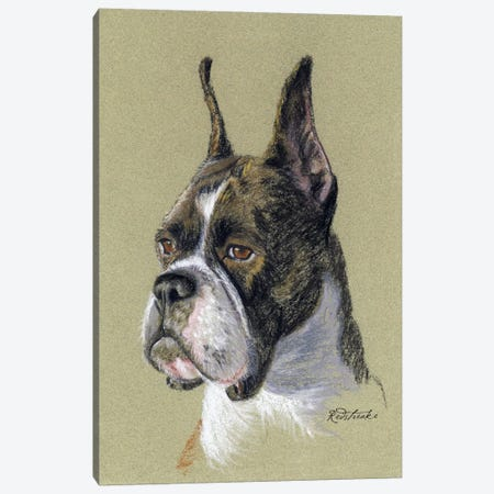 Boxer Canvas Print #JRE65} by Jennifer Redstreake Canvas Wall Art