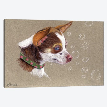 Chihuahua Canvas Print #JRE68} by Jennifer Redstreake Art Print