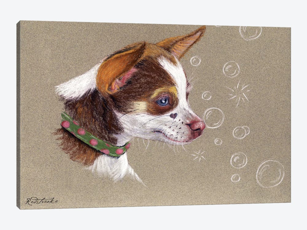 Chihuahua by Jennifer Redstreake 1-piece Art Print