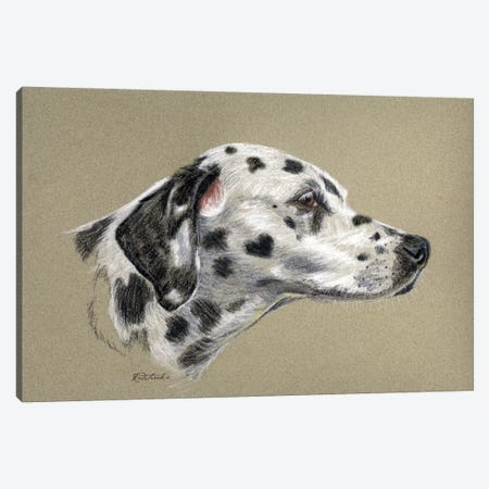 Dalmatian Luv Canvas Print #JRE70} by Jennifer Redstreake Canvas Artwork
