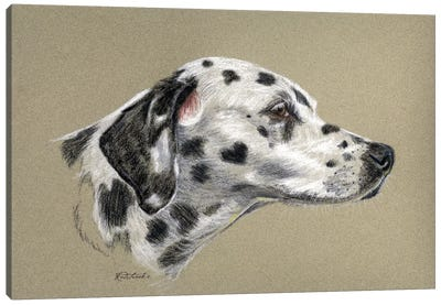 Dalmatian Luv Canvas Art Print