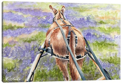 Donkey Lavender Canvas Art Print