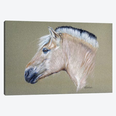 Fjord Mare Canvas Print #JRE72} by Jennifer Redstreake Canvas Art