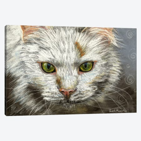 Green Eyes Canvas Print #JRE75} by Jennifer Redstreake Art Print