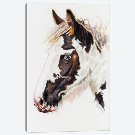 Gypsy Filly Canvas Print #JRE76} by Jennifer Redstreake Canvas Print