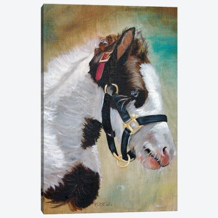 Gypsy Foal Canvas Print #JRE77} by Jennifer Redstreake Canvas Print