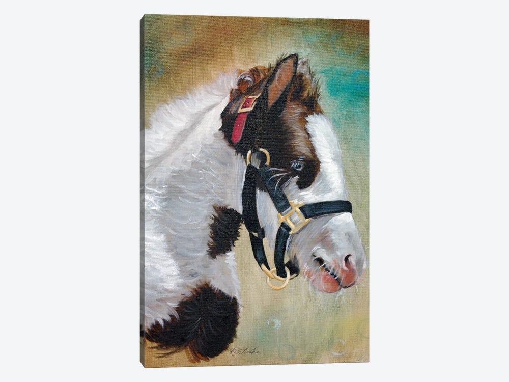 Gypsy Foal by Jennifer Redstreake 1-piece Canvas Print