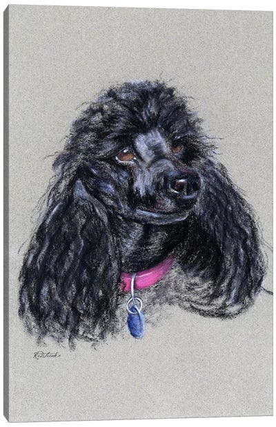 Poodle Canvas Art Print