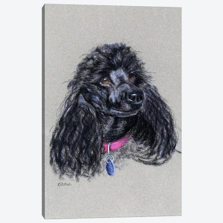 Poodle Canvas Print #JRE83} by Jennifer Redstreake Canvas Art Print