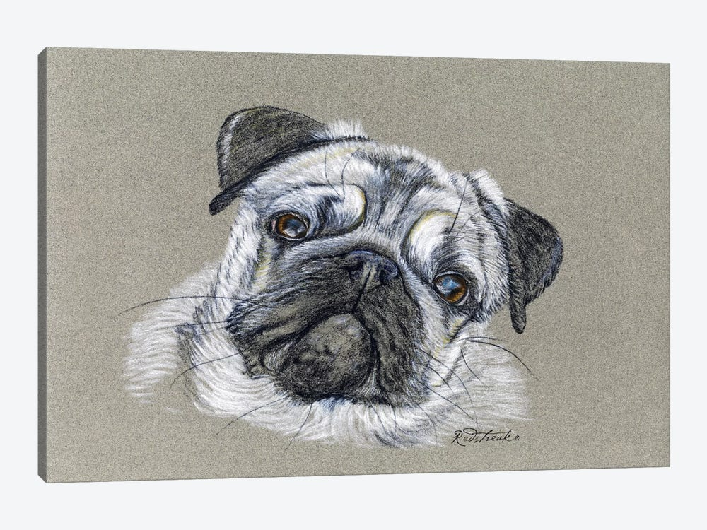 Pug by Jennifer Redstreake 1-piece Canvas Art Print