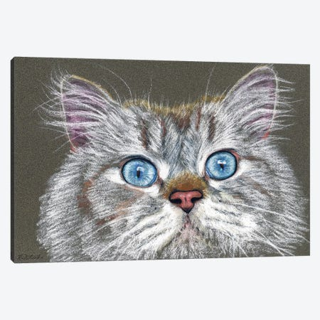Surprised Cat Canvas Print #JRE88} by Jennifer Redstreake Canvas Art Print