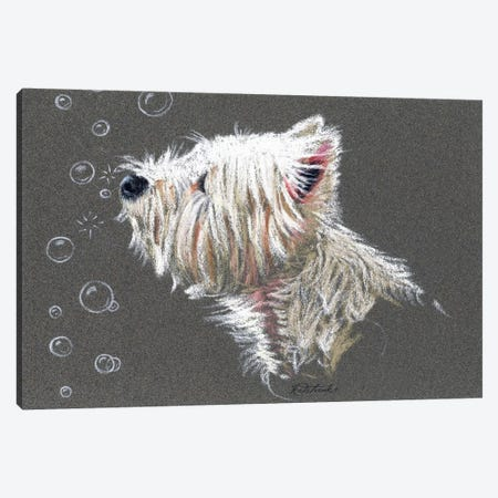 Westie Bubbles Canvas Print #JRE99} by Jennifer Redstreake Canvas Artwork