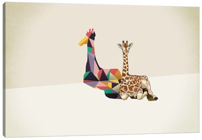 Walking Shadow Giraffe Canvas Art Print