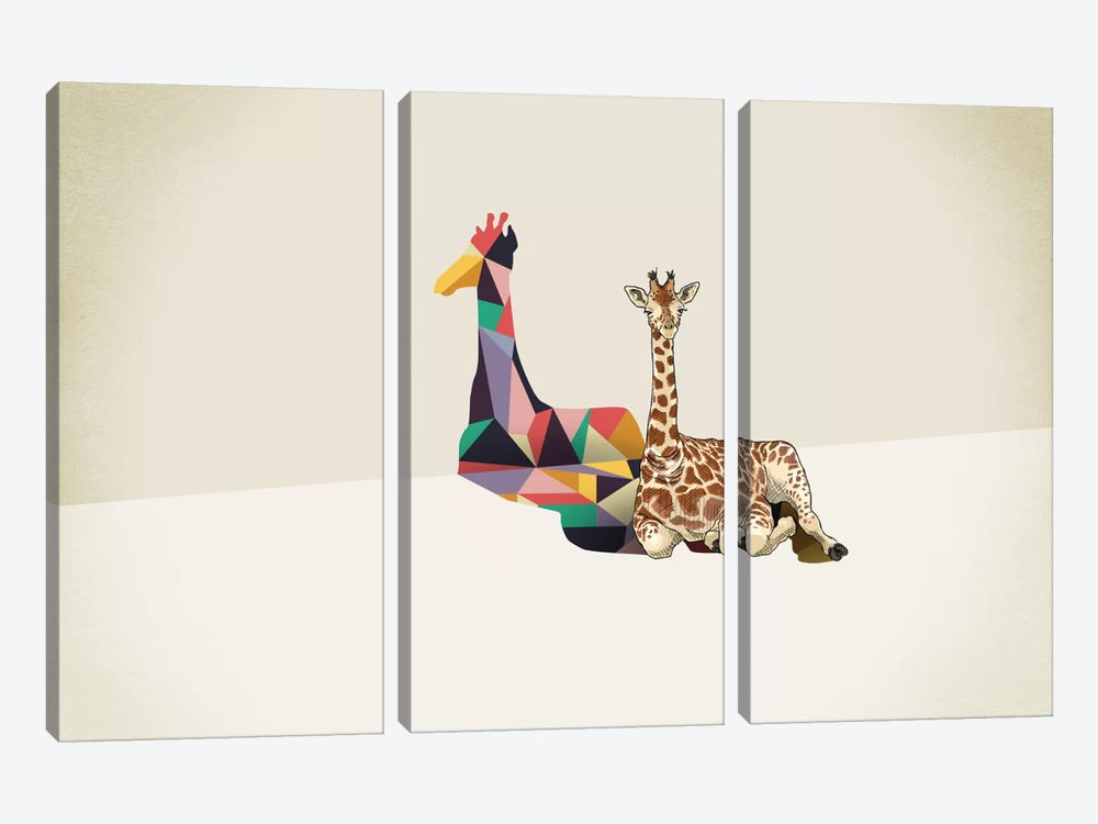 Walking Shadow Giraffe by Jason Ratliff 3-piece Canvas Artwork