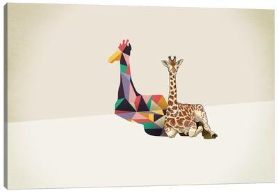 Walking Shadow Giraffe Canvas Art Print