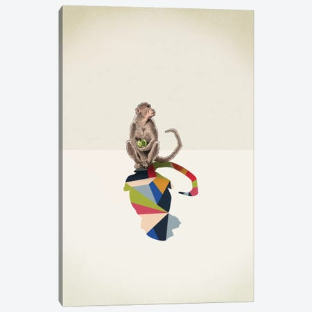 Walking Shadow Monkey Canvas Print #JRF15} by Jason Ratliff Canvas Wall Art